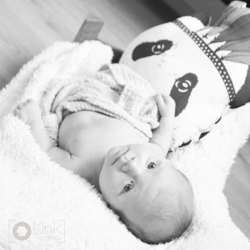 Newbornshoot, newbornfotografie, babyboy, fotografie, newborn, baby